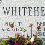 whitehead-memorial